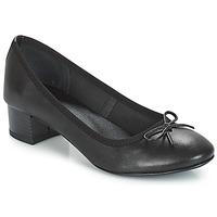 kengät Naiset Balleriinat André POETESSE Black