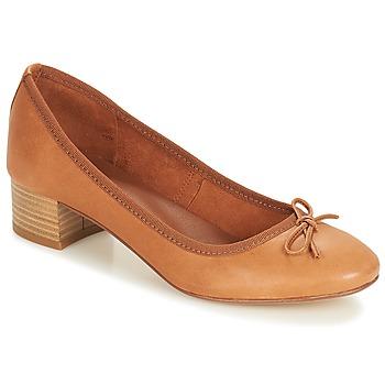 kengät Naiset Balleriinat André POETESSE Brown