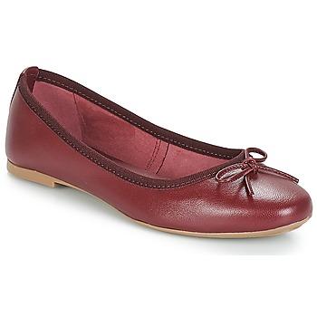 kengät Naiset Balleriinat André PIETRA Bordeaux