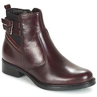 kengät Naiset Bootsit André CARLIN Bordeaux