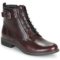 kengät Naiset Bootsit André CHEPTELA Bordeaux