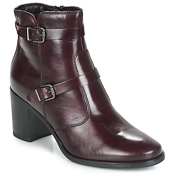 kengät Naiset Bootsit André TORI Bordeaux