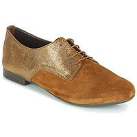 kengät Naiset Derby-kengät André COMPLICE Brown