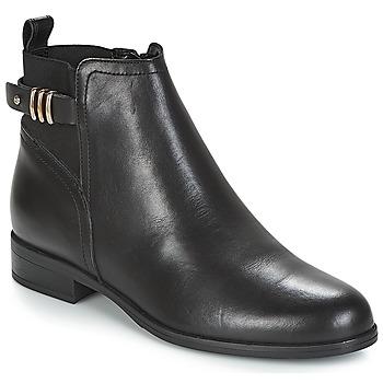 kengät Naiset Bootsit André MANEGE Black