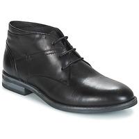 kengät Miehet Bootsit André PRATO Black