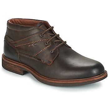 kengät Miehet Bootsit André TYROL Brown