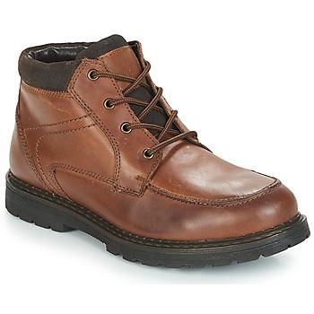 kengät Miehet Bootsit André AREZZO Brown