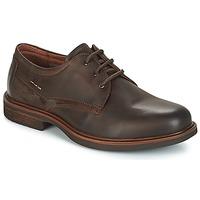 kengät Miehet Derby-kengät André TIVOLI Brown