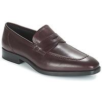 kengät Miehet Mokkasiinit André MOC Bordeaux