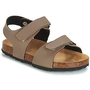 kengät Lapset Sandaalit ja avokkaat André LES CRABES Taupe