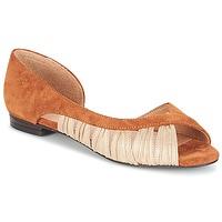 kengät Naiset Sandaalit ja avokkaat André PIPA Camel