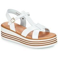 kengät Naiset Sandaalit ja avokkaat André LUANA White