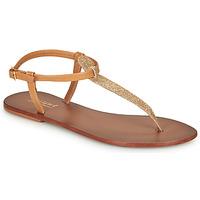 kengät Naiset Varvassandaalit André GLITTER Camel