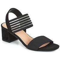 kengät Naiset Sandaalit ja avokkaat André CORFOU Black