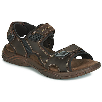 kengät Miehet Sandaalit ja avokkaat André MIAMI Brown