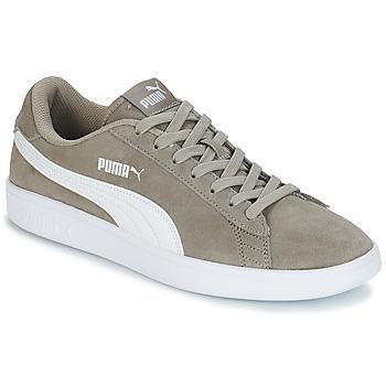 kengät Miehet Matalavartiset tennarit Puma SMASH V2 SD Grey