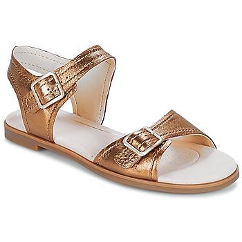 kengät Naiset Sandaalit ja avokkaat Clarks Bay Primrose Bronze / Metallinen
