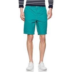 vaatteet Miehet Shortsit / Bermuda-shortsit Lee Chino Short L70MCA82 green