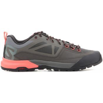 kengät Naiset Vaelluskengät Salomon X Alp Spry W 398601 brown
