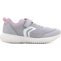 kengät Lapset Sandaalit ja avokkaat Geox J Waviness G.C J826DC 01454 C1296 grey, pink