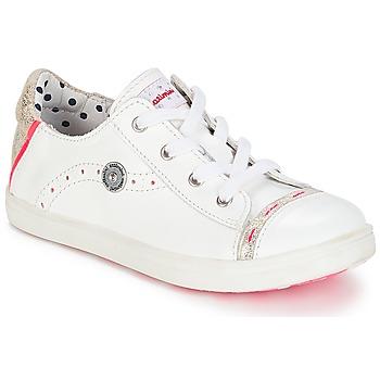 kengät Tytöt Matalavartiset tennarit Catimini PANDA White / Dpf / Venus