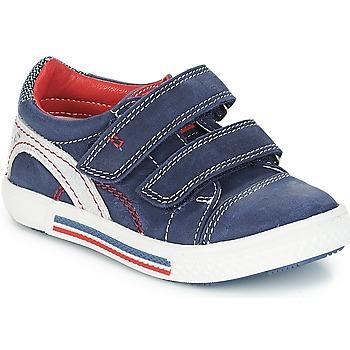 kengät Pojat Matalavartiset tennarit Catimini PERRUCHE Nus / Laivaston sininen-punainen / Dpf / Harmaa / valkoinen / vi
