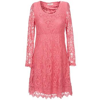 vaatteet Naiset Lyhyt mekko Cream ANNEMON LACE Pink