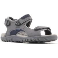 kengät Miehet Sandaalit ja avokkaat Geox Strada WF Harmaat