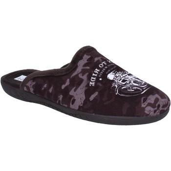 kengät Miehet Tossut Pregunta BX441 Ruskea
