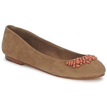 kengät Naiset Balleriinat Ambre Babzoe DUFFY CAMEL