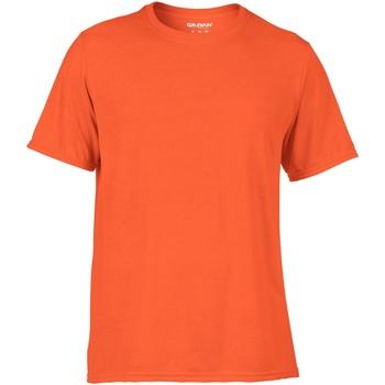 vaatteet Miehet Lyhythihainen t-paita Gildan 42000 Orange
