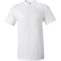 vaatteet Miehet Lyhythihainen t-paita Gildan Ultra White