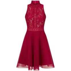 vaatteet Naiset Lyhyt mekko Little Mistress  Berry