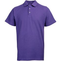 vaatteet Miehet Lyhythihainen poolopaita Rty Workwear Heavyweight Purple