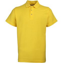 vaatteet Miehet Lyhythihainen poolopaita Rty Workwear Heavyweight Sunflower