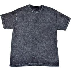 vaatteet Miehet Lyhythihainen t-paita Colortone Mineral Black
