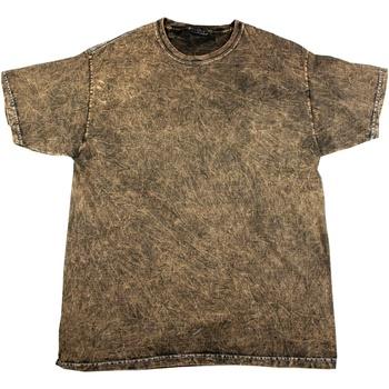 vaatteet Miehet Lyhythihainen t-paita Colortone Mineral Brown