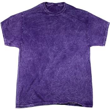 vaatteet Miehet Lyhythihainen t-paita Colortone Mineral Purple