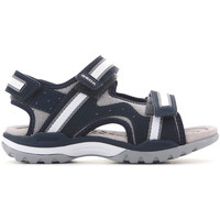 kengät Lapset Sandaalit ja avokkaat Geox J Borealis J820RB 01050 C0661 navy , grey, white