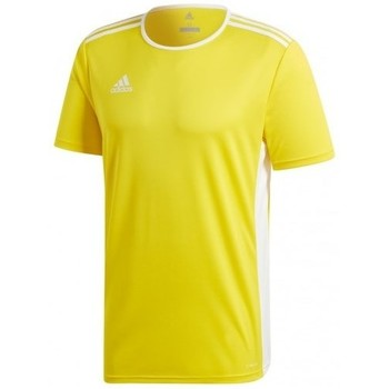 vaatteet Miehet Lyhythihainen t-paita adidas Originals Entrada 18 Jsy Keltaiset
