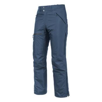vaatteet Miehet Housut Salewa Sesvenna Ws Lrr M Pnt 25820-8671 blue