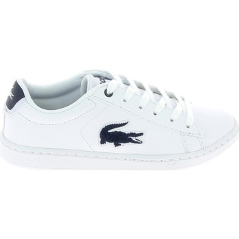 kengät Lapset Matalavartiset tennarit Lacoste Carnaby Evo C Blanc Bleu Valkoinen