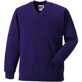 vaatteet Lapset Svetari Jerzees Schoolgear 272B Purple
