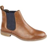 kengät Naiset Bootsit Cipriata  Tan