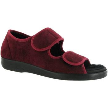 kengät Naiset Tossut Gbs BROMPTON ( MED) Burgundy