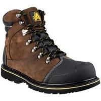 kengät Miehet Bootsit Amblers 227 S3 WP Brown