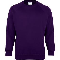 vaatteet Lapset Svetari Maddins MD01B Purple